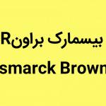 بیسمارک براونR